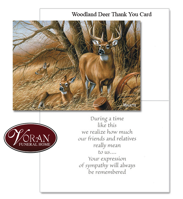 Woodland Deer Thank You